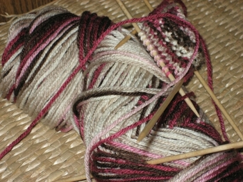 Cocorosesweater